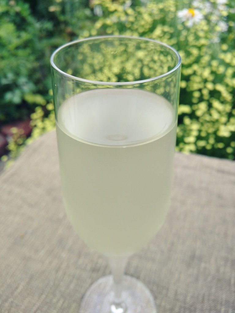 Glass of elderflower champagne
