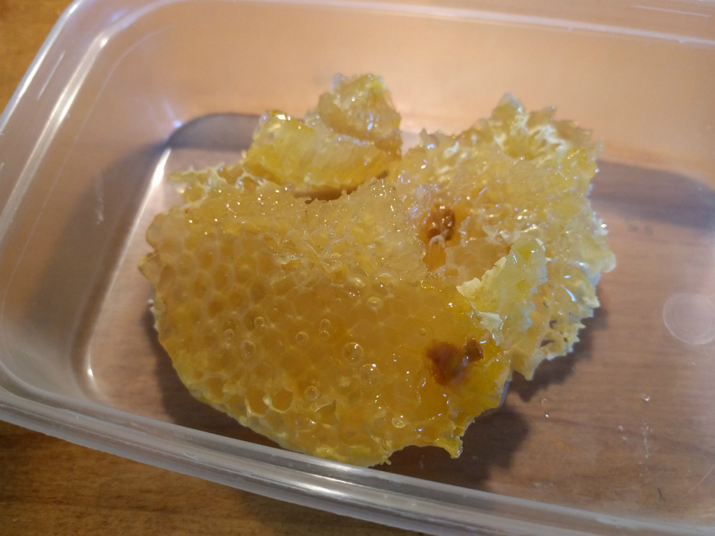 Cut away honeycomb